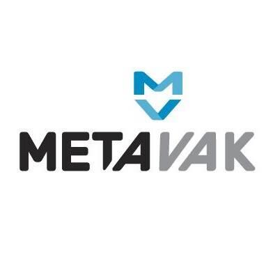 Terugblik Metavak